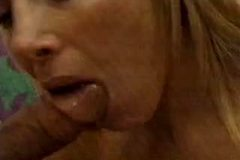 Lovette Blowjob and Titfuck