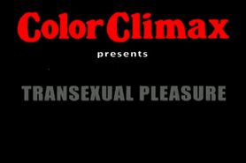 Transsexual Pleasure