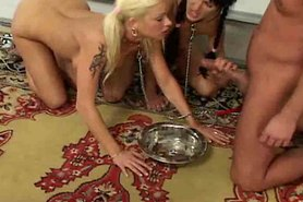Stacey Silver and Sarah Twain fucked like dogs