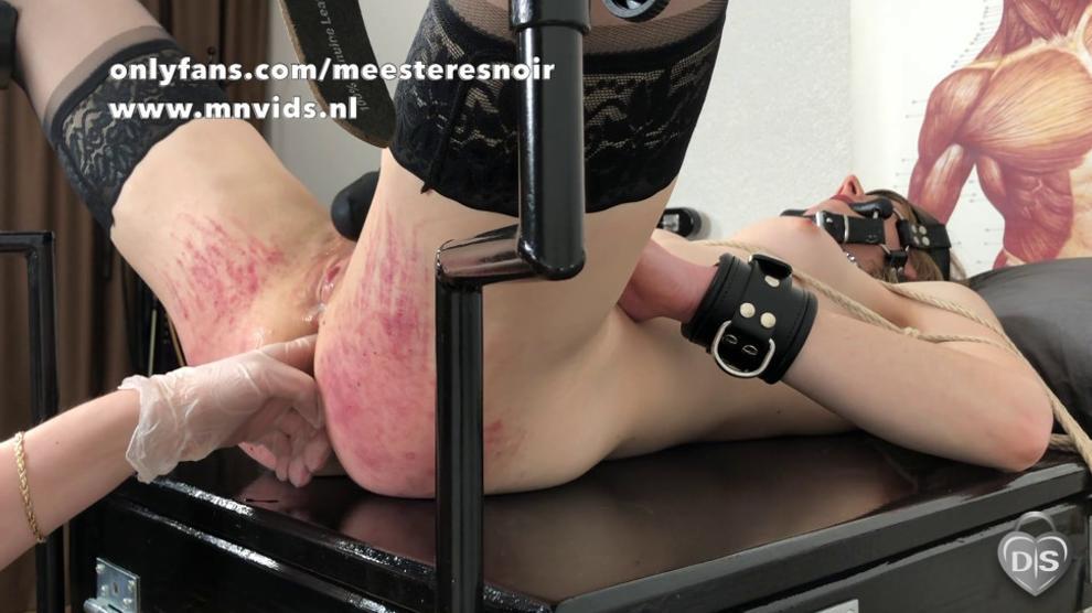 3wplayer ass holes
