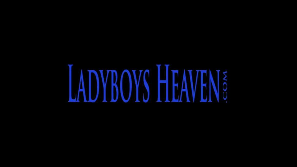 Ladyboy Asian