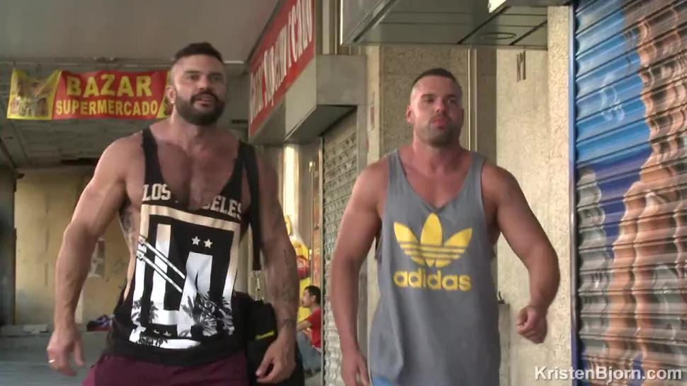 Muscular Bears show each other their muscles