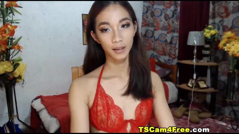 Asian Tranny Jerking Her Hard Dick