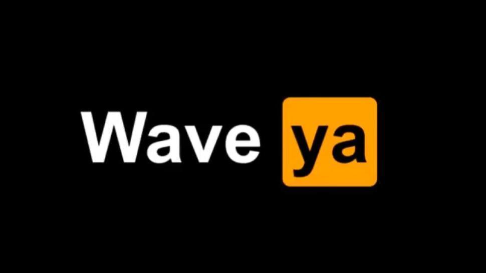 Waveya fake NSFW video compilation I found on Reddit