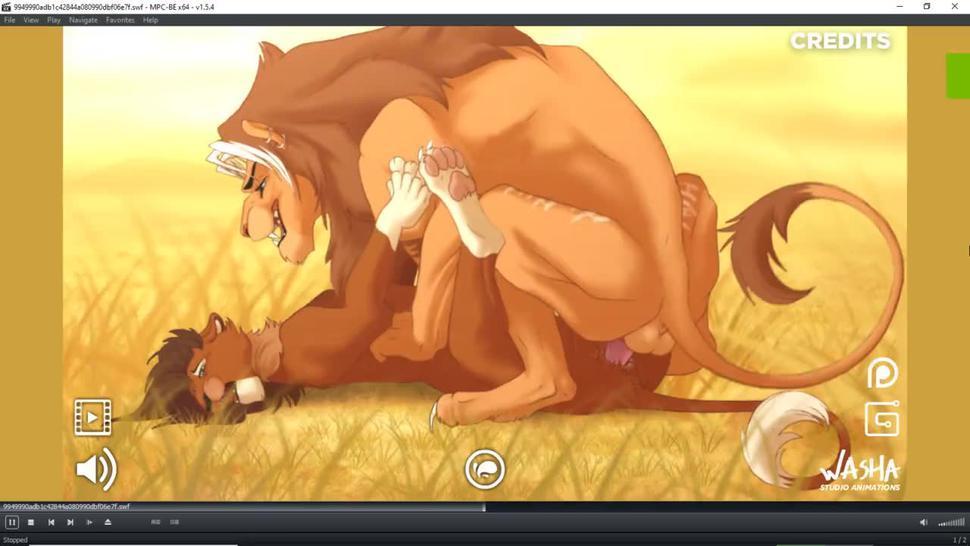 furry animals feral animation wild alpha lions gay sex savanna