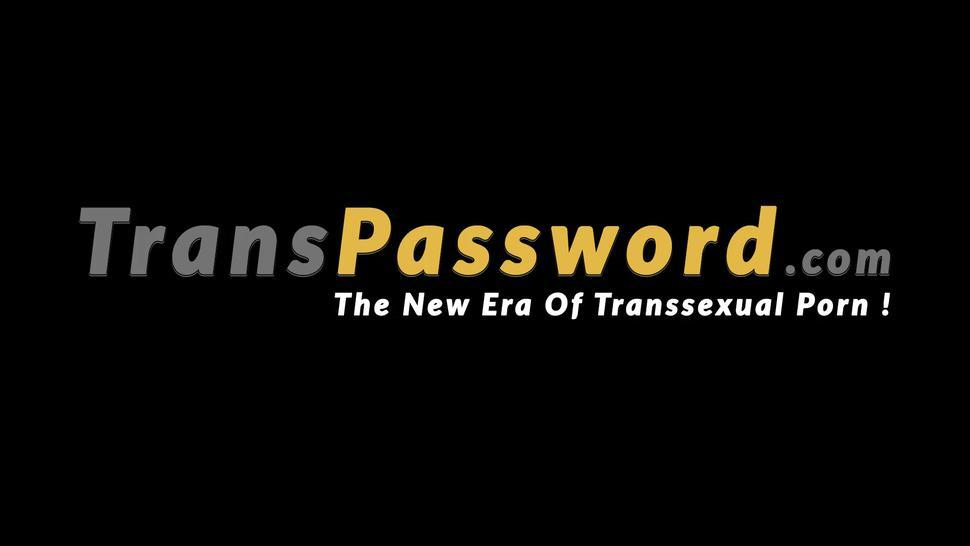 Hd/shemale solo password wanking tits