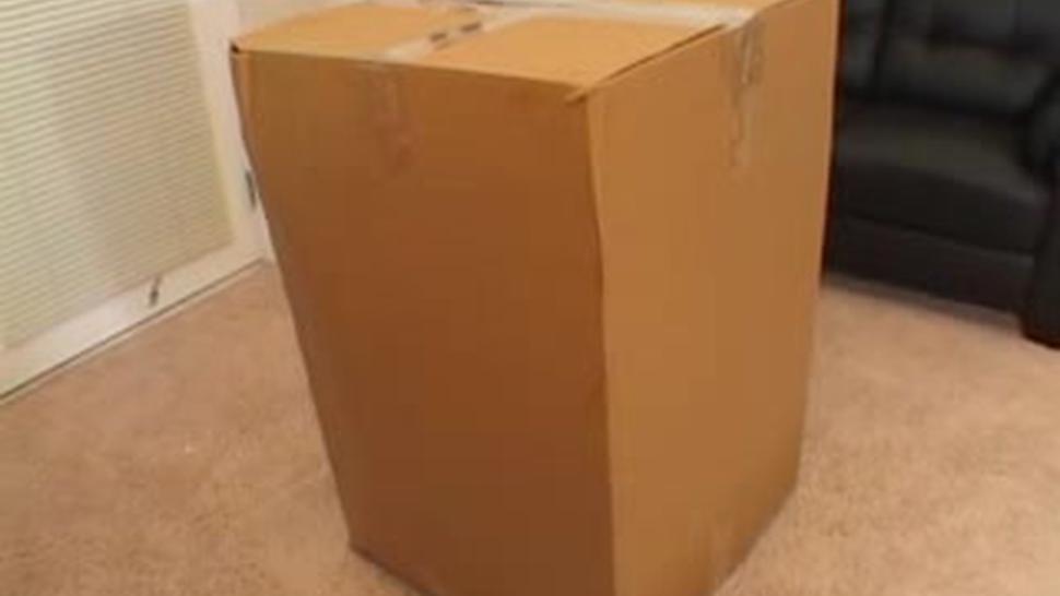 Huge... Cock In A Box - Savannah Stern