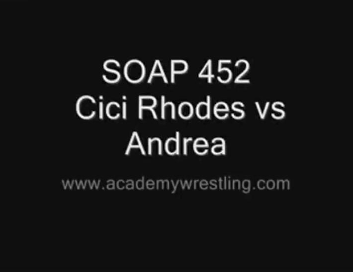Nude women wrestling - video 1