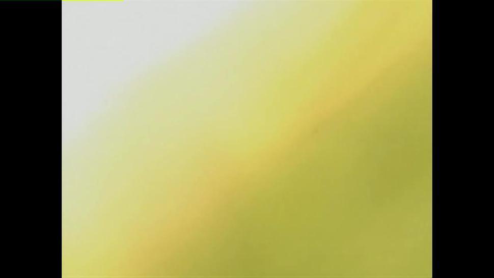 Hentai English Dubbed [Flashback Game] (episode 3/3)