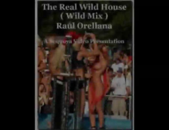 Blonde/mix wild wild real