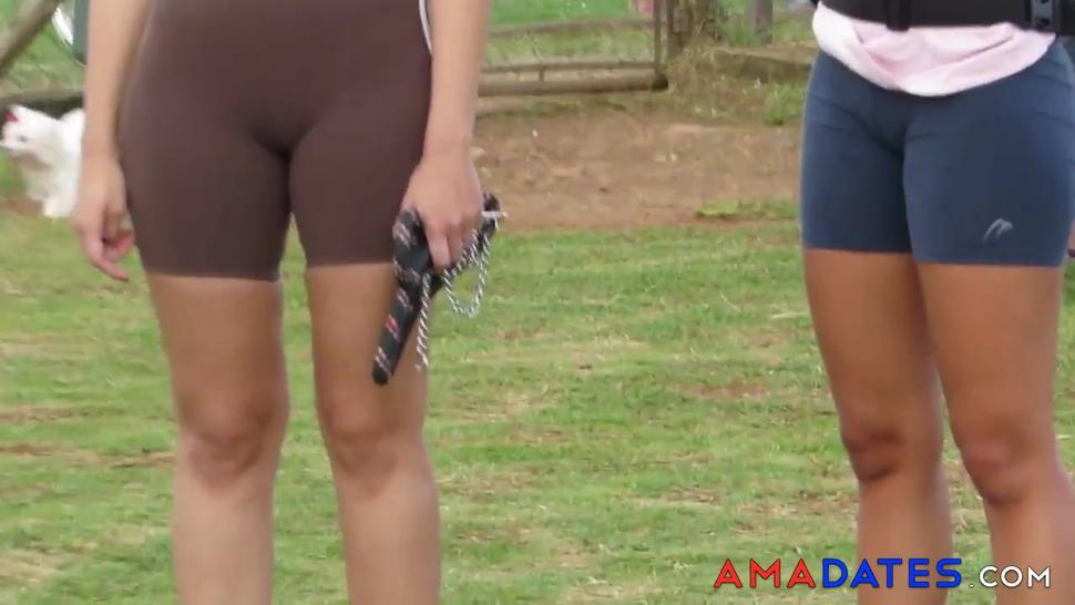 SDRUWS2 - TWO BIG CAMELTOES IN PUBLIC PARK