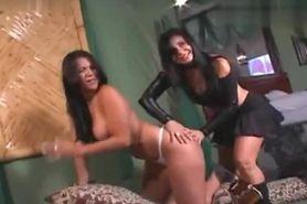 kostenlose sexvideos von carol miranda