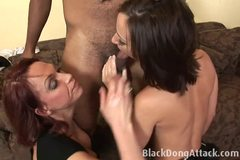 Two hot chicks suck a black dude