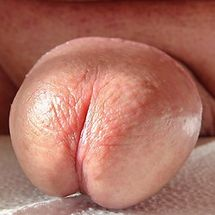raider7001's Favorite Porn Videos, Explicit XXX Photos & More