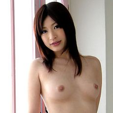 Nadeshiko Girls's Free Porn Videos, Porn Pics, Profile & More