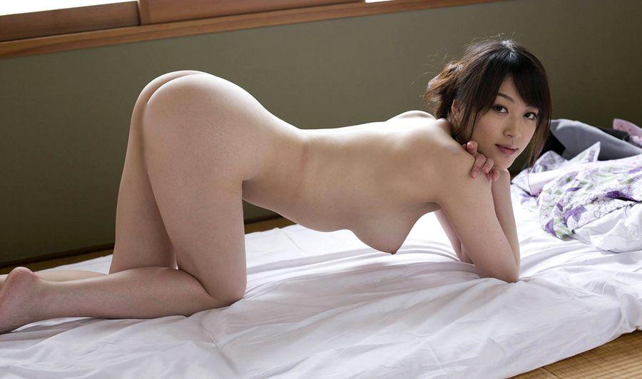 Akari Hoshino Niemira PornDish 1