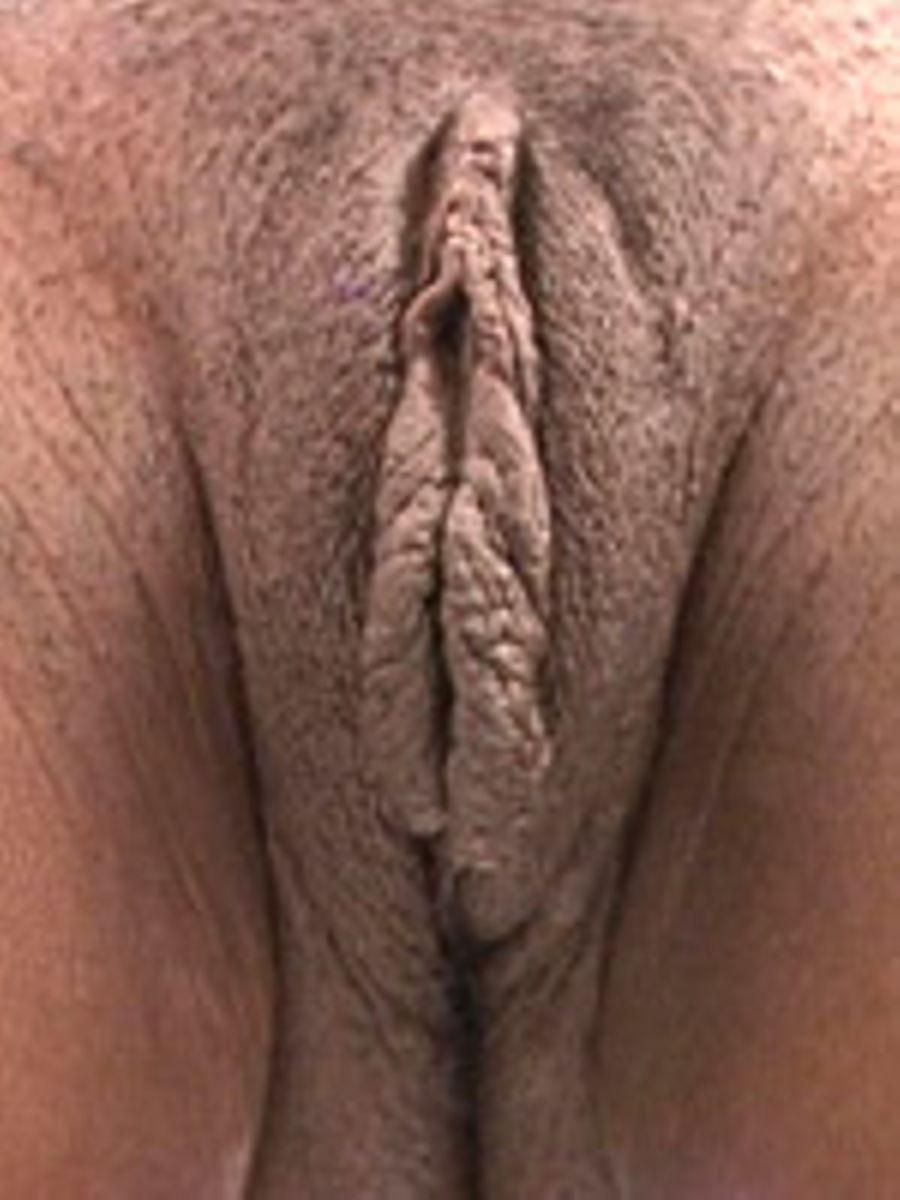 big phat pussy pic tight wet pussy cum