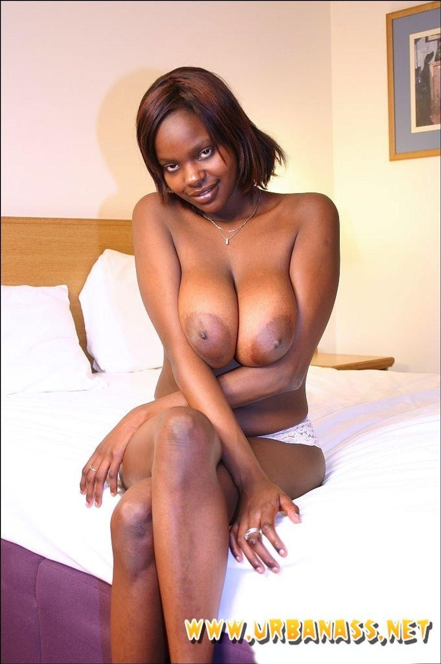 tits Black natural