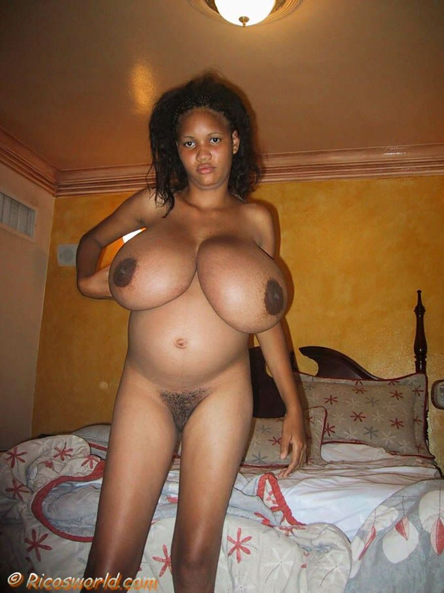 Gigantic Pregnant Ebony Boobs Photo Gallery Porn Pics -1168